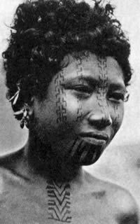 Hula facial tattooing, ca. 1915. The stepped tattoos (lakatoi) on the woman's cheeks and nose note that her father participated in several successful trading voyages. However, some scholars believe that this design evolved from the concept of an elbowed birds' wing, possibly a predatorial bird. The motif on the throat denotes that the woman is married.