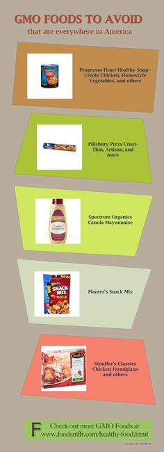 GMO Foods To Avoid - they are everywhere in supermarkets in America -      If you wish to avoid gmo foods, start with these foods that are everywhere in America. For more, check out GMO Foods at FoodSniffr. See how FoodSniffr can help you eat gluten free vegan.       - Healthy Foods & Recipes, Shop Healthy, Vegetarian Food, Vegetarian Recipes