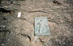Appalachian Trail in Georgia