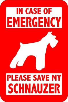 """PLEASE SAVE MY SCHNAUZER 5"""" TALL DECAL RED - manufactured & sold by EYECANDY DECALS only"""