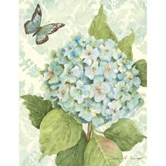 Blue Hydrangea Boxed Notecard , 1005295 | Lang