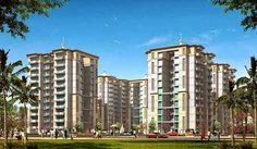 3C Lotus Greens Yamuna Expressway launches affordable lucrative residential flats that give you all your luxurious needs and designed to provide complete living comforts.