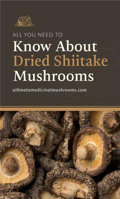 Dried shiitake mushrooms yield many more health benefits than the fresh ones produce. Shiitake Mushroom Soup, Mushroom Broth, Mushroom Food, Mushroom Guide, Health Benefits Of Mushrooms, Mushroom Benefits, Dried Mushrooms, Stuffed Mushrooms, Garden Mushrooms