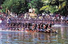 Snake boat race - the largest team sport in the world. A snake boat is actually a long traditional canoe style boat used by the people of the Kuttanadu region, in south India's state of Kerala. Typical snake boats are 100 to 120 feet long, and hold around 100 rowers. Each of the villages in the region has its own snake boat, which they take great pride in.   Snake boat races are mostly held from July to September, with the exact dates varying each year depending on the phase of the moon.