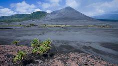 L'île de Tanna est farouche et sauvage. Les pandanus parsèment la plaine du Siwi au pied du volcan Yasur.
