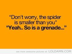 """Don't worry, the spider is smaller than you""""    """"Yeah… So is a grenade…"""""""