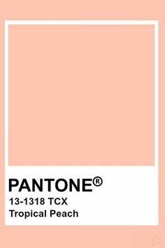 Pantone Swatches, Color Swatches, Pantone Colour Palettes, Pantone Color, Pantone Green, Peach Aesthetic, Aesthetic Colors, Colour Pallete, Colour Schemes