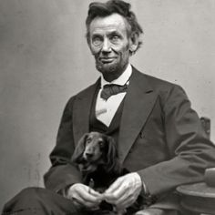president lincoln and his doxie ♥♥♥ dauchshund dauchshunds weenier weeniers weenie weenies hot dog hotdogs doxie doxies ♥♥♥