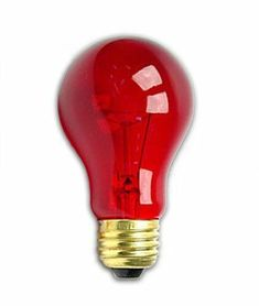 25 Watt Transparent Red Light Bulb by Generic Aesthetic Light, Red Aesthetic, Colored Light Bulbs, Light Colors, Standard Lamps, Incandescent Bulbs, Shades Of Red, Lamp Bases, Halloween
