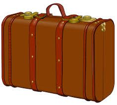 Image result for suitcase