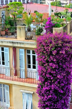 Antibes, Cote d' Azur, France. Would like to visit Antibes again.Even near Catalonia Wonderful Places, Beautiful Places, Simply Beautiful, Beautiful Gorgeous, Cagnes Sur Mer, French Balcony, Juan Les Pins, Porche, Provence France