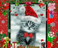 Merry Christmas Merry Christmas Pictures, Merry Christmas Quotes, All Things Christmas, Christmas Christmas, Gifs, Jewelry Quotes, Animation, Nouvel An, Cute Cats