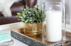 coffee table greenery