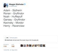 Contents of Maggie Stiefvater's Brain More