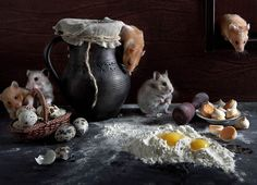 """Photograph """"Culinary Specialists"""" by Elena Eremina on 500px"""