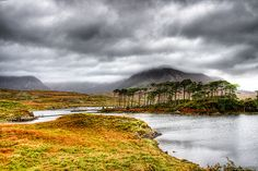 Connemara National Park, Ireland.  I have spent many happy and contented hours walking these lands.
