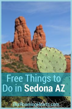 Making memories and exploring is easy with this list of Free Things to do in Sedona Arizona. Enjoy your visit without breaking the bank! #sedona #arizona #freethingstodo #ourroaminghearts #frugaltravel | Free Things To Do | Arizona Travel | Sedona | Frugal Travel | Things to do in Sedona AZ | Family Attractions Arizona Travel, Sedona Arizona, Travel With Kids, Family Travel, Arizona Ghost Towns, Flying With Kids, Pet Travel, Free Things To Do, Family Adventure