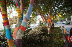 Knitted trees in Australia , photo by Lord Shinzon