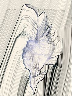 nearlya:  Kevin Whitfield. An image of a feather, generative art, 2010