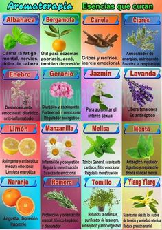 Plantass que curan #Aromaterapia http://webpositiva.es/org/blog/category/terapias/aromaterapia #Esencias