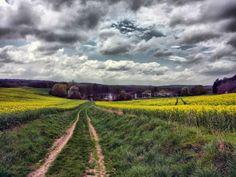 Spring time on Polish soil.