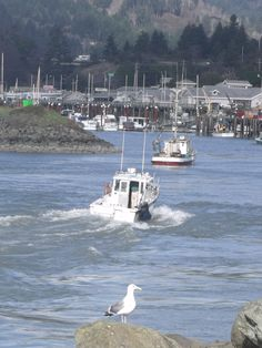 """Spent a weekend in a gorgeous hotel overlooking the open ocean. The room had """"tsunami warning"""" evacuation directions.I will live here one day! Brookings Oregon, Coos Bay, Out To Sea, Oregon Coast, Ocean Beach, Fishing Boats, Pacific Northwest, Us Travel, West Coast"""