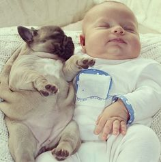 Adorable Baby Cuddles Up with French Bulldog Puppies - My Modern Metropolis