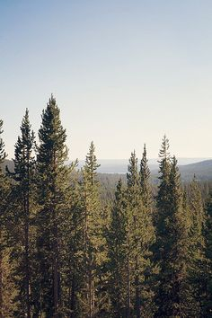 TITLE: Wyoming DESCRIPTION: Mountain View in the Rocky Mountains of Wyoming.