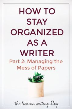 Get a handle on all your paper! Sort your story notes and file away your worksheets with my tips on staying organized. Click through to check them out!