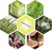 Les bioplastiques suscitent depuis quelques années un intérêt grandissant. Toutefois, le développement de ce nouveau secteur n'est pas sans soulever un certain nombre de questionnements et de défis.