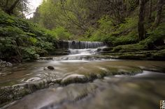 https://flic.kr/p/UB8Ufp | Flowing in the nature | Avio, Trento  Fotocamera: Canon EOS 650D Esposizione: 130 Aperture: f/11 Lente: 10 mm ISO: 100 Exposure Bias: 0 EV Flash: Off, Did not fire Lens: Sigma 10-20mm F4-5.6 EX DC HSM Filters: B+W ND110  NOTE: MY photos are NOT to be used or reproduced, COPIED, BLOGGED, USED in any way shape or form. Understand clearly these are my photographs and use of them by anyone is an infringement of my copyrights and personal artistic property!  © All…
