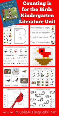 Counting is for the Birds Kindergarten Literature Unit Printables {free}