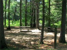 Bonnechere Provincial Park, Camping in Ontario Parks Ontario Parks, Outdoor Furniture, Outdoor Decor, Camping, Plants, Campsite, Plant, Campers, Backyard Furniture