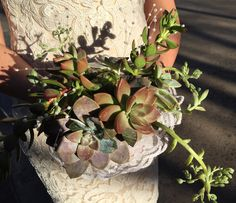 A terrific idea for a bride's bouquet in Arizona! Bride Bouquets, Wedding Blog, Arizona, Succulents, Plants, Bridal Bouquets, Succulent Plants, Plant, Planets