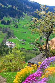 Grindelwald, Switzerland: one of my very favorite places- KB Top Places To Travel, Places To See, Wonderful Places, Beautiful Places, Beautiful Scenery, Places Around The World, Around The Worlds, Hotel In Den Bergen, Image Nature