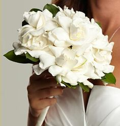 The perfect wedding bouquet includes white floral gardenias. They are naturally have the most delicious perfume notes and are the most chic, sophisticated, and timeless. Gardenia Wedding Bouquets, Gardenia Bouquet, Bride Bouquets, Wedding Flowers, Wedding Day, Send Flowers, Wedding Ceremony, Gift Flowers, Dream Wedding