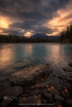 Desolation - Leaves were fallen and withered, lives are ending, feeling desolate.   by Carl Pan on 500px