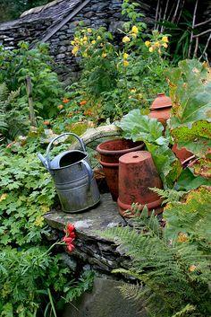 Beatrix Potter, pots and watering can Dream Garden, Garden Art, Garden Tools, Garden Design, Garden Cottage, Garden Projects, Beatrix Potter, The Farm, Rabbit Garden
