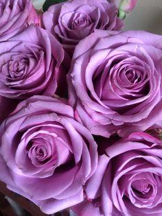 Fresh fragrant roses to brighten my bedroom