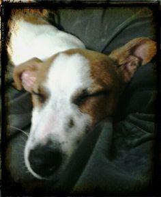 My sleeping beauty Turbo .. rm