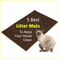 A great cat litter mat can make a huge difference in keeping cat litter scatter under control and keeping your house cleaner. Some litter mats are worth every penny and others not worth your time. Here are our picks for the top 5 best litter mats... see more at PetsLady.com ... The FUN site for Animal Lovers