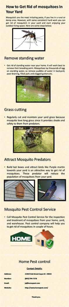 There are many disease which comes from mosquito's bite like Malaria, Dengue and many more. Here are some steps which will help you to get rid of mosquito's from your yard. For more information visit http://www.homepest.com/