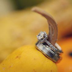 Wedding Rings - Photo Source • Mark Romine Photography
