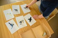 We've always enjoyed matching work in our home. It started with Otis matching real items and them moving onto matching with cards. One thing I've failed to mention is that the child should already be familiar with the item before introducing the model. These birds are a great example, with...