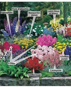 house flower garden 705024516640564430 - Collection 33 plantes vivaces assorties – Superficie environ 4 m² – Willemse Source by Love Garden, Dream Garden, Farm Gardens, Outdoor Gardens, Cottage Gardens, Romantic Cottage, Plantar, Flower Beds, Garden Planning