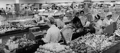 1957 Supermarket-style shopping for groceries at Woolworths