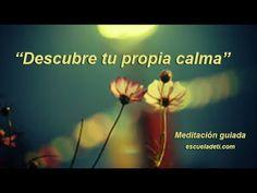 Impresionante meditación guiada para calmar realmente el estrés