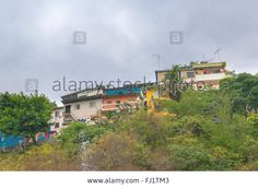 Download this stock image: Low angle view of picturesque colored poor houses at the top of a hill at Cerro Santa Ana in Guayaquil, Ecuador. - FJ1TM3 from Alamy's library of millions of high resolution stock photos, illustrations and vectors.