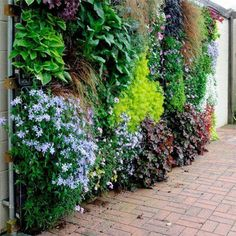HOME DZINE Garden | Disguise or cover ...  Wish our precast concrete balcony wall could look like this only in miniature. Trouble is wall faces into house so V little sunlight ...
