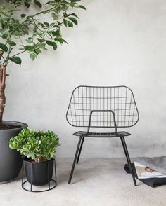 The WM String Lounge Chair might be a simple design but it looks stylish and sophisticated. There's the light and airy appearance which is beautifully Outdoor Chairs, Dining Chairs, Outdoor Furniture, Outdoor Decor, Lounge Chairs, Eames Chairs, Office Chairs, Upholstered Chairs, Outdoor Living